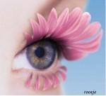 La fleur prend l'énergie de vie de la terre, de l'air, de lalumière…